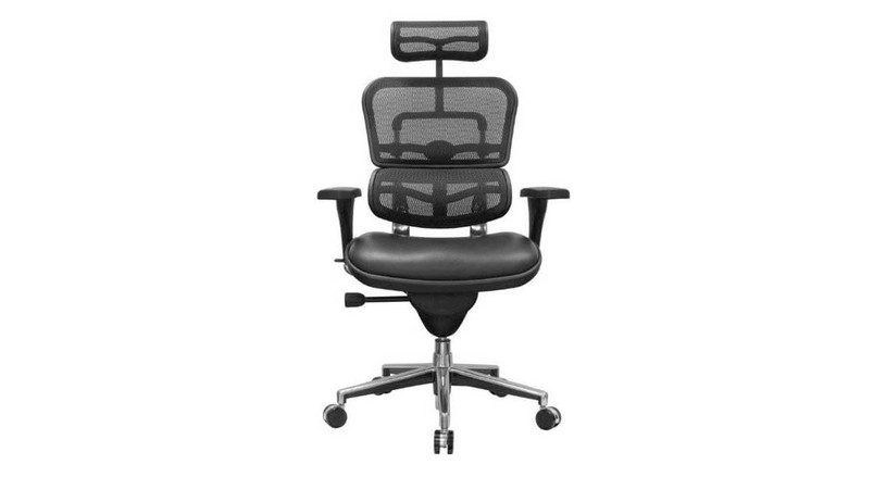 The Raynor Ergohuman Mesh Chair with Leather Seat and Headrest  is available with black mesh on the seat back and headrest