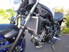 Suzuki SV650 Radiator Guard