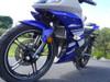 Yamaha YZF - R15 Radiator Guard