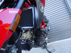 Ducati Hypermotard 950 Radiator Guard