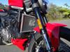Ducati Monster 2021 Radiator Guard