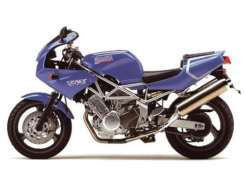 Yamaha TRX850 Radiator Guard All Year Models