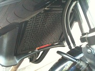 Radguard on Honda