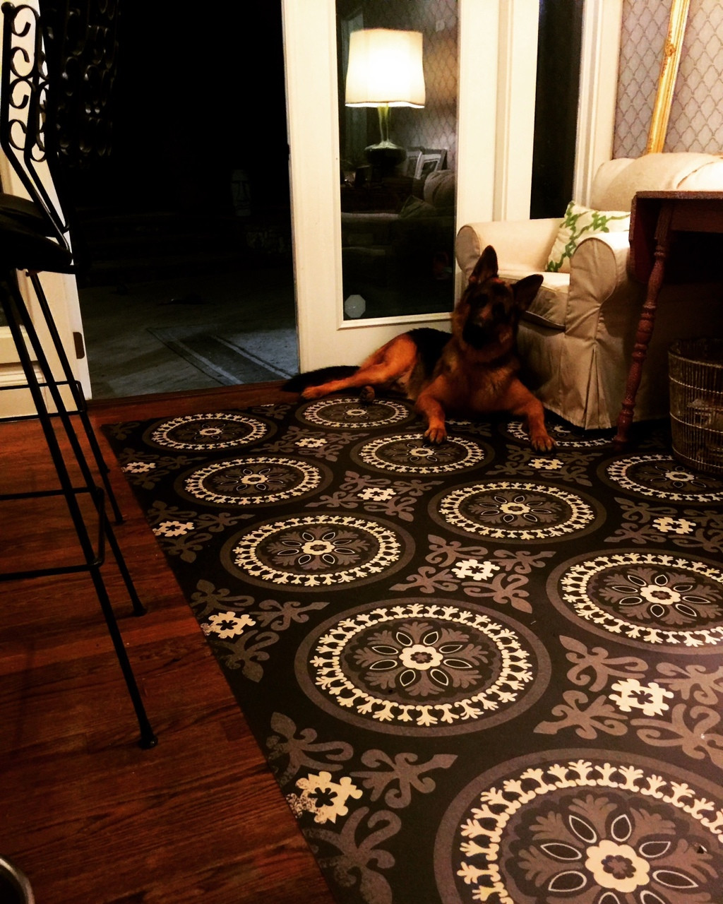 Customer in home use of Karma
