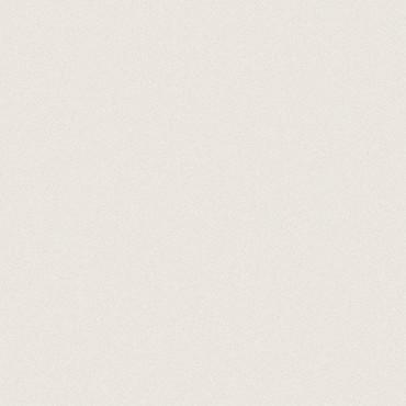 Prima Warm White Matte Rectified Porcelain Tile 12x12
