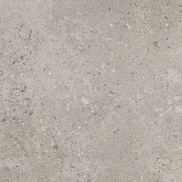 Dignitary Collection - Superior Taupe Unpolished Porcelain 24x24