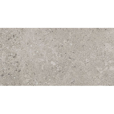 Dignitary Collection - Superior Taupe Unpolished Porcelain 24x48