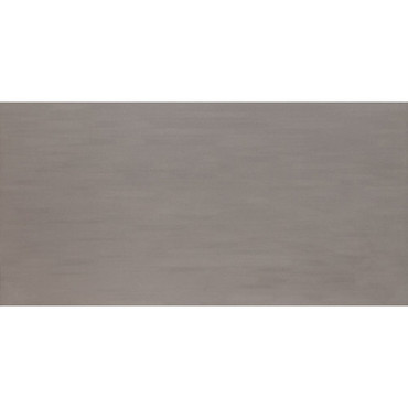 Formula Collection - Axiom Silver Unpolished Porcelain 24x48