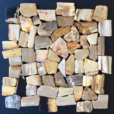 Exotics Petrified Forest Mosaic 12x12 Seamless Interlocking (TOEPETFORMOS1212)