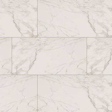 Pietra Carrara Polished 12x24 (NPIECAR1224P)