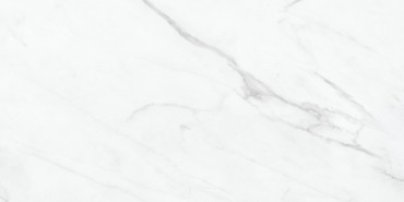 Altezza Carrara 12x24 (69-993)
