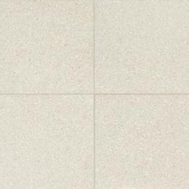Neospeck White Porcelain 24x24 (NE0124241PK)