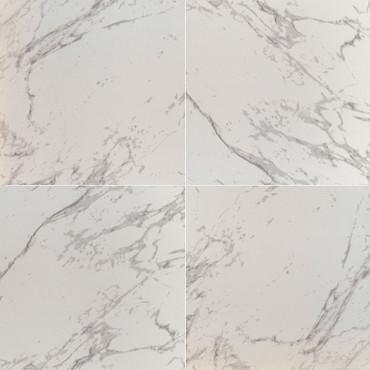 Pietra Carrara Polished 24x24 (NPIECAR2424P-N)