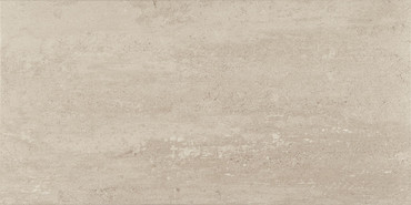 Theoretical Fundamental Gray Porcelain Floor 12x24 (TH9412241PK)