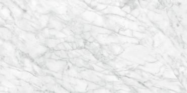 Plata Carrara Abisso Matte Porcelain 24x48 (4500-0960-0)