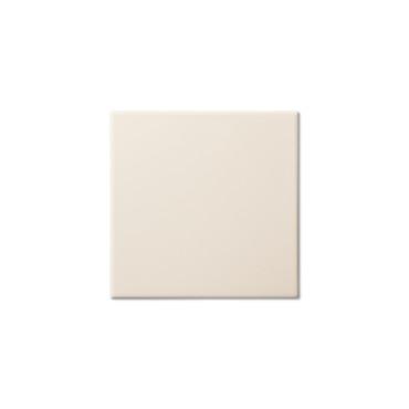 Studio Bamboo Glazed Edge 5.8X5.8 (ADXADSTB803)