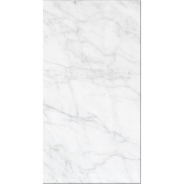 Bianco Carrara Honed 12X24