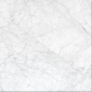 Bianco Carrara Honed 24X24