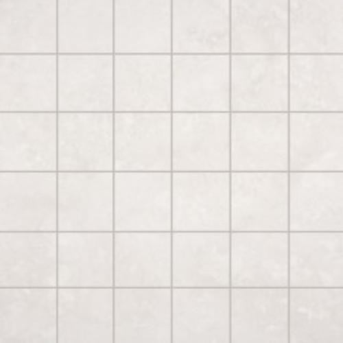 Renaissance Silver Mosaic 2X2