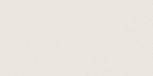 Prima Warm White Matte Rectified Porcelain Tile 12x24