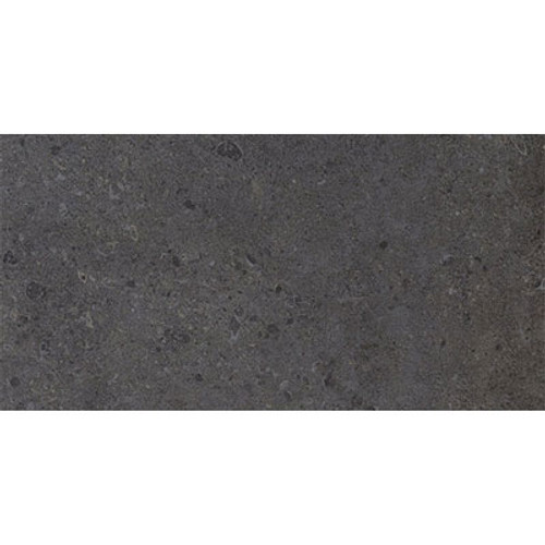Dignitary Collection - Govenor Black Unpolished Porcelain 12x24