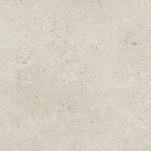 Dignitary Collection - Luminary White Unpolished Porcelain 24x24