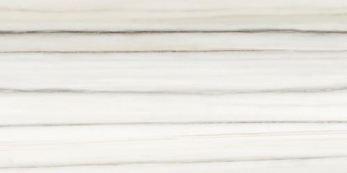 Mayfair Zebrino 12x24 HD Polished Rectified Porcelain (69-946)