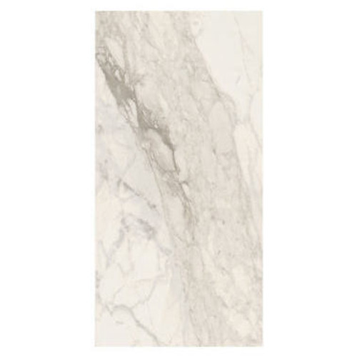 Calacatta Renoire Polished 24X48 (IRP2448170