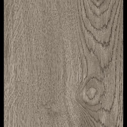 Bio-Select Oak Ash Porcelain 12x48 (ALG6B300)
