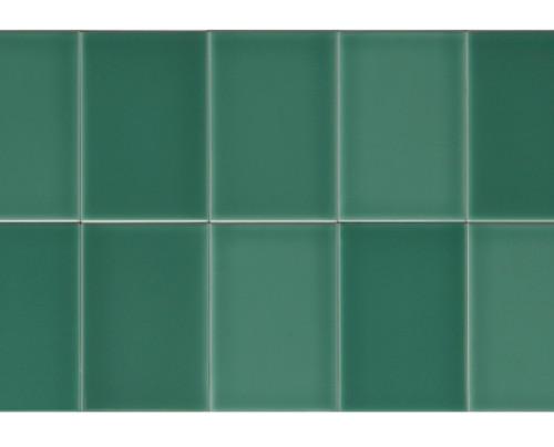 Riviera Rimini Green 4x6 Field Tile (ADRRI846)