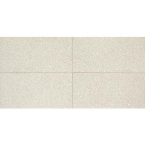 Neospeck White Porcelain 12x24 (NE0112241PK)