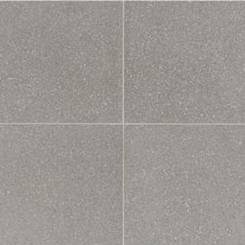 Neospeck Light Gray Porcelain 24x24 (NE0324241PK)