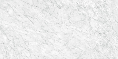 La Marca Carrara Gioia Polished Rectified 24x48 (4500-0831-0)