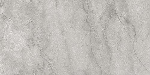 La Marca Paradiso Argento Polished Rectified 24x48 (4500-0832-0)
