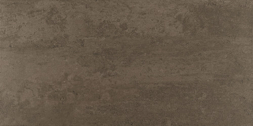 Theoretical Absolute Brown Porcelain Floor 12x24 (TH9312241PK)