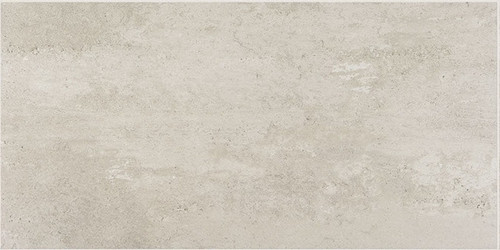 Theoretical Logical Gray Porcelain Floor 12x24 (TH9512241PK)