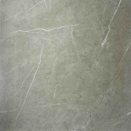 Precious Marble Moderne Pietra Grey Silver Polished 32x32 (21E8809852)