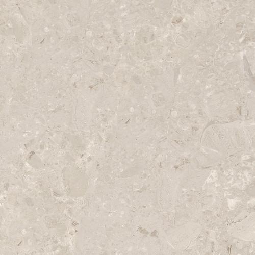 Velvet Almond Matte Porcelain 24x24 (7W60)