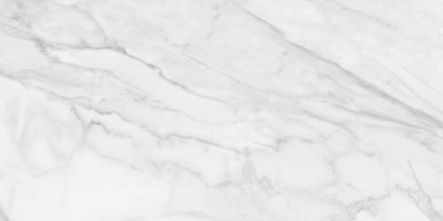Plata Statuario Brina Matte Porcelain 24x48 (4500-0954-0)
