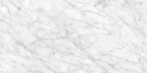 Plata Carrara Abisso Polished Porcelain 24x48 (4500-0959-0)