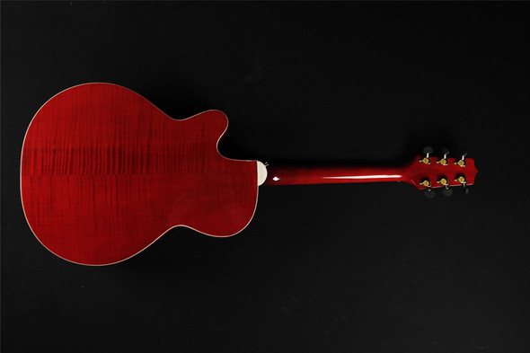 Takamine EG540C Deluxe NEX Acoustic/Electric -  Red (535)