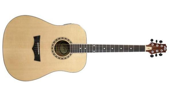 Peavey DW-2 Acoustic NAT