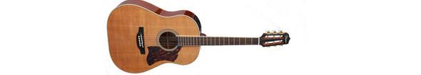 Takamine CRN-TS1 Slope Shoulder 12Th Fret Dreadnought Acoustic Guitar, Natural
