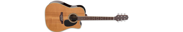Takamine EF360SC-TT Thermal Top Pro Series Acoustic/Electric Guitar