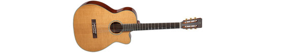 Takamine EF740FS-TT Thermal Top Acoustic-Electric Guitar With Hard Case