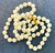 Wholesale Endless Glass Pearl Necklaces by the Dozen - White - 36 Inches Long