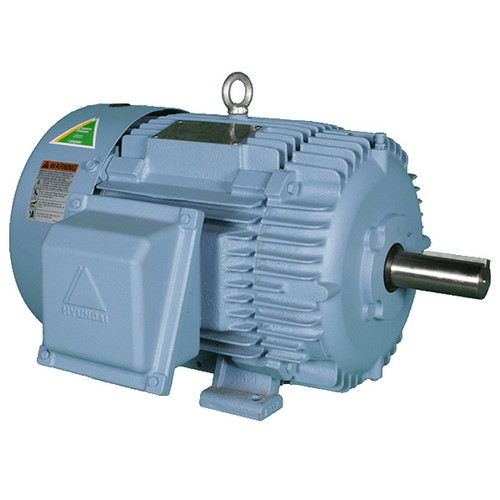 200HP 1800RPM 447TSC