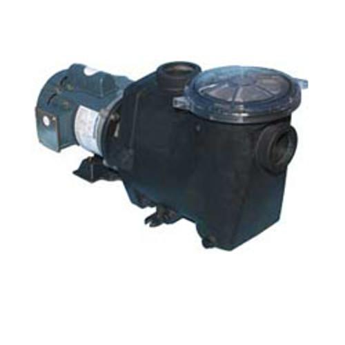 3 HP Quiet Flo Plus Pool Pump