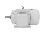 Oil well pumps motors