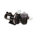 Sta-Rite Replacement Pool Pumps - Electric Motors